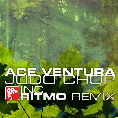 Ace Ventura - The Spark (Ritmo remix)